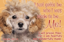 Pass It On-I just gotta Be message cards, holy cards, bookmarks, prayer cards, thougts, card to share, group gifts, inspirational gift, sacramental gifts,