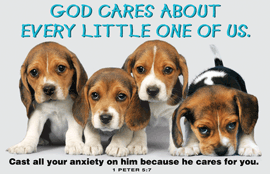 God Cares About Every Little One of Us-Small Poster 34856, poster. wall decor, small poster, inspirational message, teacher resource, school supplies, sunday school, classroom,
