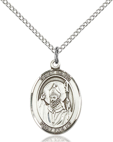 St. David of Wales Pendant St. David Of Wales ,Doves and Wales,Patron Saints,Patron Saints - D, sterling silver medals, gold filled medals, patron, saints, saint medal, saint pendant, saint necklace, 8027,7027,9027,7027SS,8027SS,9027SS,7027GF,8027GF,9027GF,